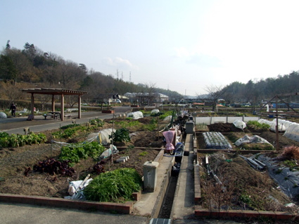 ファームトピア蒲生野いきいき農園利用者募集