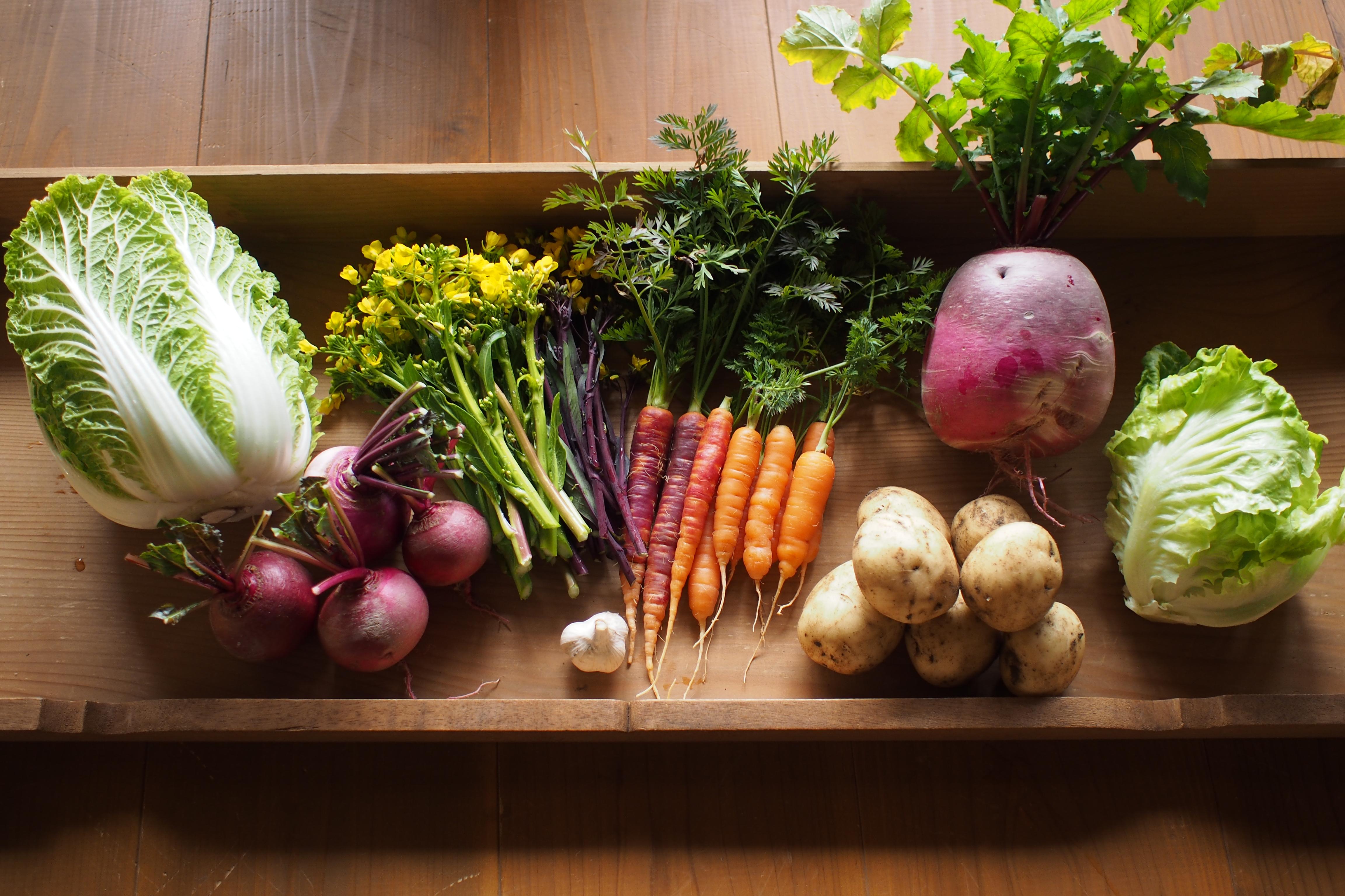 プロに学ぶ!身体にやさしい料理講座(全3回)参加者募集中!